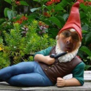 gnome4